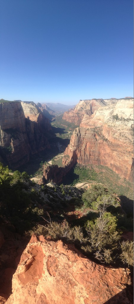 Zion National Park Observation Point.