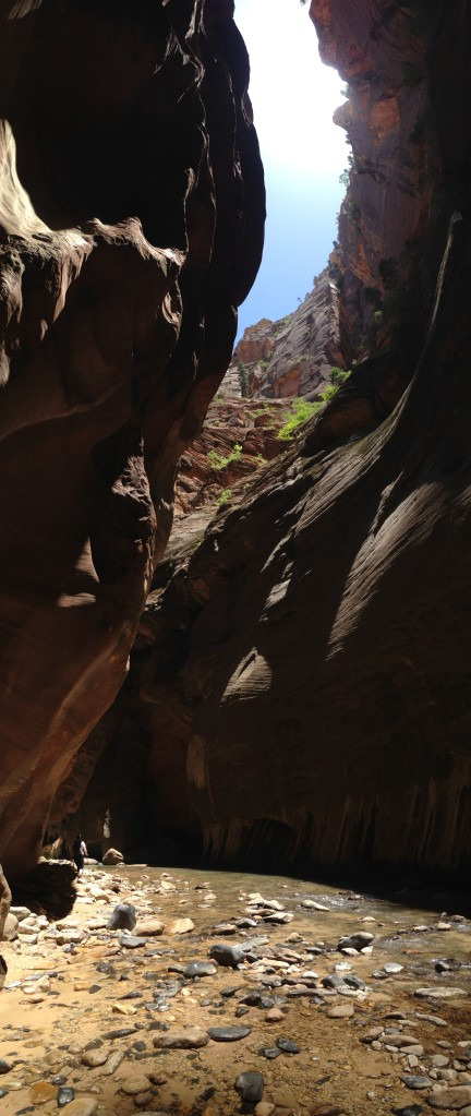 Zion National Park. The Narrows hike.