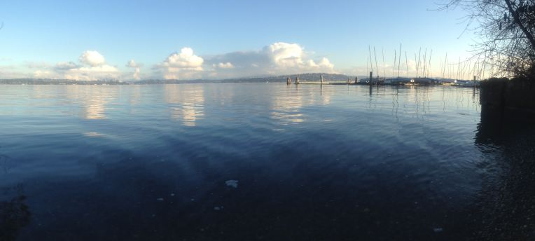 Lake Washington looking toward Bellevue.