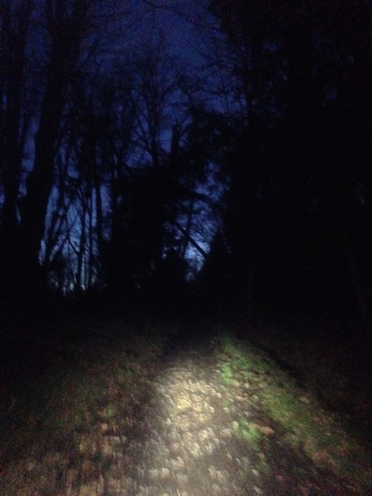 Running by headlamp is a bit tunnel vision and blurry at times. Cougar Mountain.