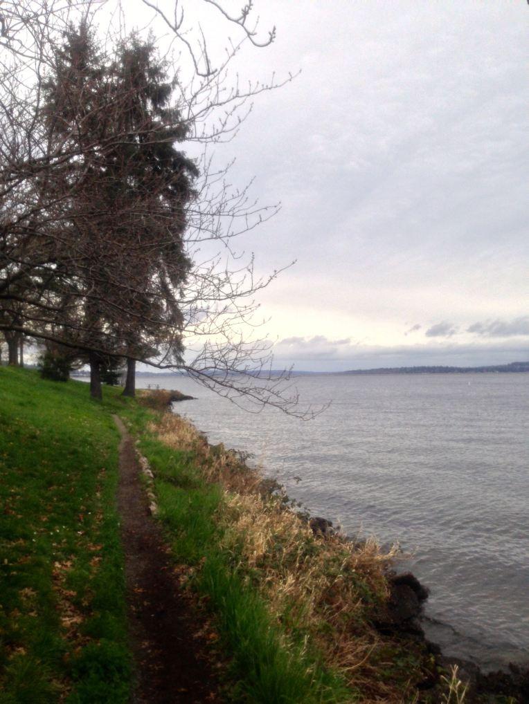 Single track along the Seattle side bank of Lake Washington.