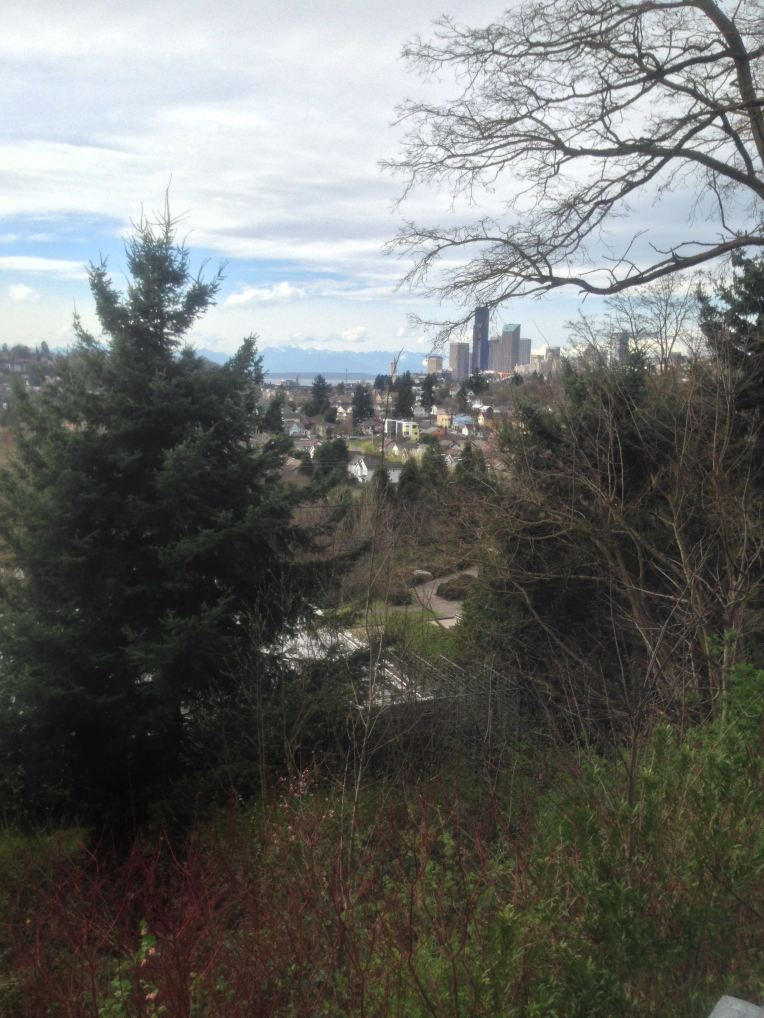 Downtown Seattle from the Leschi neighborhood.