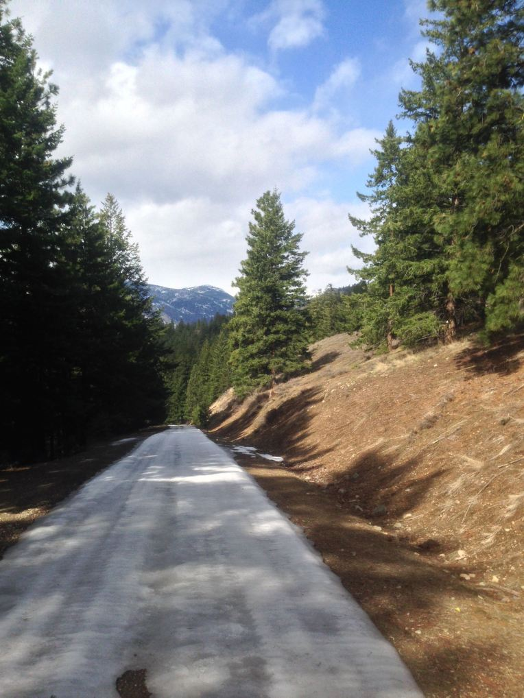 Snow Road. West Fawn Creek Road, Mazama.