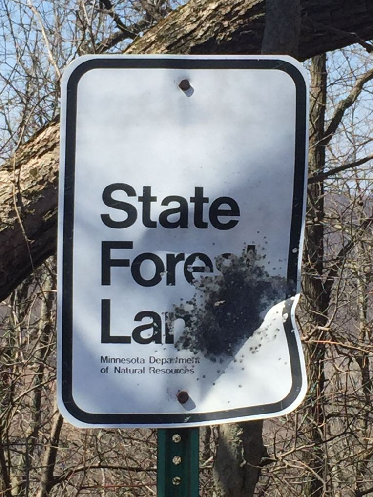 Apparently not everyone agrees Zumbro Bottoms should be State Forest Land.
