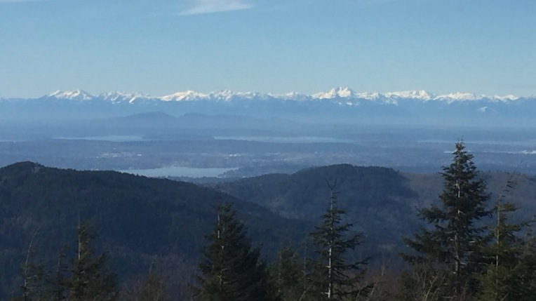 The majestic Olympics from TIger Mountain