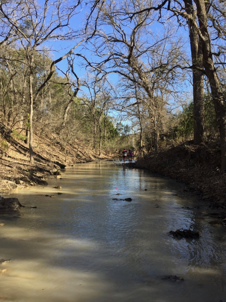"""That there is almost a half mile of the """"trail"""" on loop 2 which is really just a shin to knee high creek."""